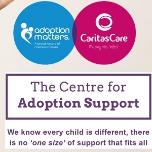 2013 - The Centre for Adoption Support